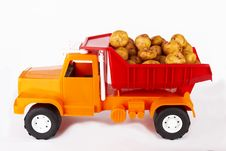 Free Potatoes Royalty Free Stock Photo - 25060315
