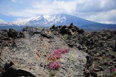 Free Volcano Etna. Stock Photography - 25061982