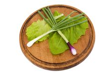 Free Mix Lettuce, Sorrel And Onions Stock Photos - 25063383