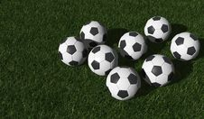Free Soccer Balls On A Green Lawn Stock Photo - 25064230
