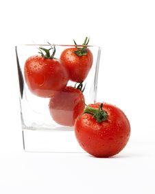 Free Tomato Stock Photography - 25089702