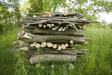Free Firewood Royalty Free Stock Photography - 25091897