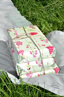 Free The Pink Birthday Gift On The Grass Stock Photo - 25096480