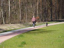 Free Walking Royalty Free Stock Photo - 2513455