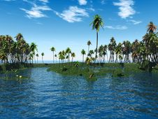 Free Palm Island Stock Photo - 2514570