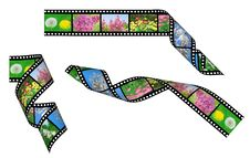 Set Of Film Strips Royalty Free Stock Image