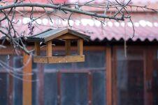 Free Bird Feeder Royalty Free Stock Photos - 25103638