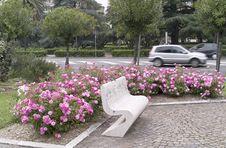 Free Garden Royalty Free Stock Photos - 25108198