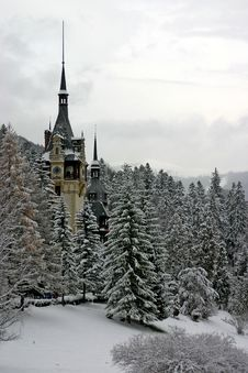 Free Winter Castle Stock Images - 25117374