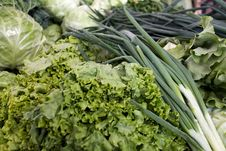 Free Green Onions, Lettuce, Cabbage Stock Image - 25118071