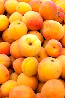 Free Apricots Stock Image - 25118951