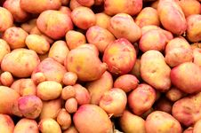 Free Sweet Potato Stock Images - 25119134