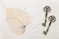 Free Antique Keys Stock Photo - 25128430