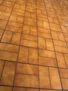 Free Orange Tiled Floor Stock Photos - 25129353