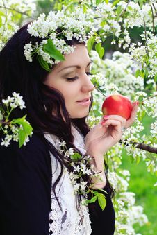 Free Young Woman Holding Apple Royalty Free Stock Image - 25126756