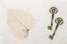 Free Antique Keys Stock Photo - 25128430