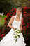 Free Laughing Bride Funny Red Roses Royalty Free Stock Image - 25129896