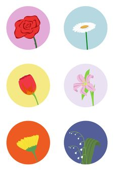 Free Set Of Flowers Royalty Free Stock Photography - 25131937