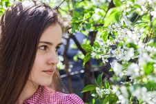 Free Beautiful Girl Was Blossoming Garden Stock Images - 25139804