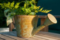 Free Watering Can As Gift Basket In Warm Light Royalty Free Stock Photography - 25146847