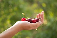 Free Hand With Cherries Stock Image - 25142361