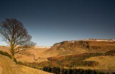 Free Lone Tree At Dovestone Reservoir In Peak Dist Stock Image - 25142851