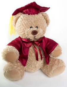 Graduation Teddy Bear Stock Images