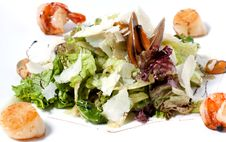 Unusual Salad With Lettuce, Seafood Stock Photos