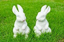 Free Couple Of White Rabbit Royalty Free Stock Image - 25149886