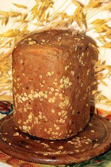 Freshly Baked Homemade Bread Stock Photos