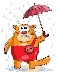 Fat Cat Under A Small Umbrella Stock Photography