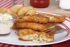 Free Fish Fillets And Fries Stock Photography - 25169352