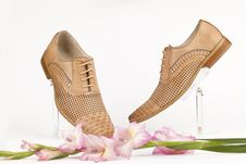 Free Shoes Royalty Free Stock Images - 25169709