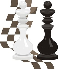 White And Black King. Chess Pieces Royalty Free Stock Photo