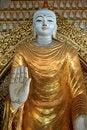 Free Buddha Stock Image - 25193131