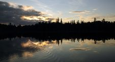 Sunset Forest Stock Photography