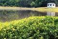 Free Country Lake Stock Photos - 2524953
