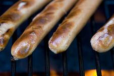 Grilling Hotdogs Royalty Free Stock Image