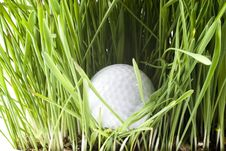 Free Golfball Stock Photo - 2520970