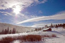Free Winter Scene Royalty Free Stock Photography - 2522217