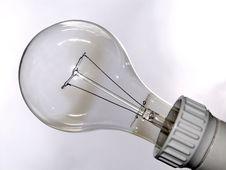 Free Big Bulb Stock Images - 2522394