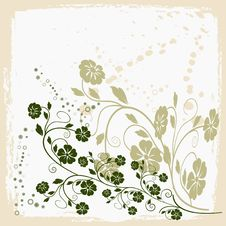 Free Floral  Background - Vector Stock Photo - 2529150