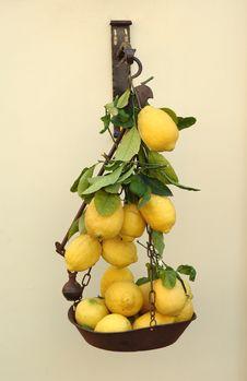 Free Lemons Stock Photos - 2529873