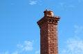 Free Brick Chimney With Pots Royalty Free Stock Photo - 25207155