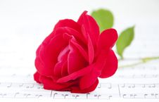 Free Rose And Music Stock Photography - 25202392