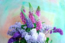 Free Flowers Royalty Free Stock Images - 25211529