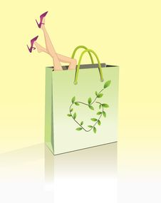 Free Shopping Bag Royalty Free Stock Images - 25221499