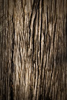 Free Wood Texture Royalty Free Stock Photos - 25224358