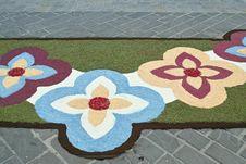 Carpet Of Flowers 5 Stock Photos