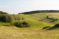 Free Green Pasture Stock Images - 25236694